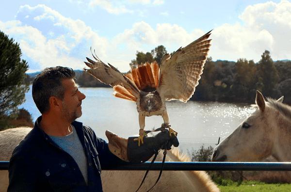 Hacienda el lago, un lugar para disfrutar de la naturaleza y animales