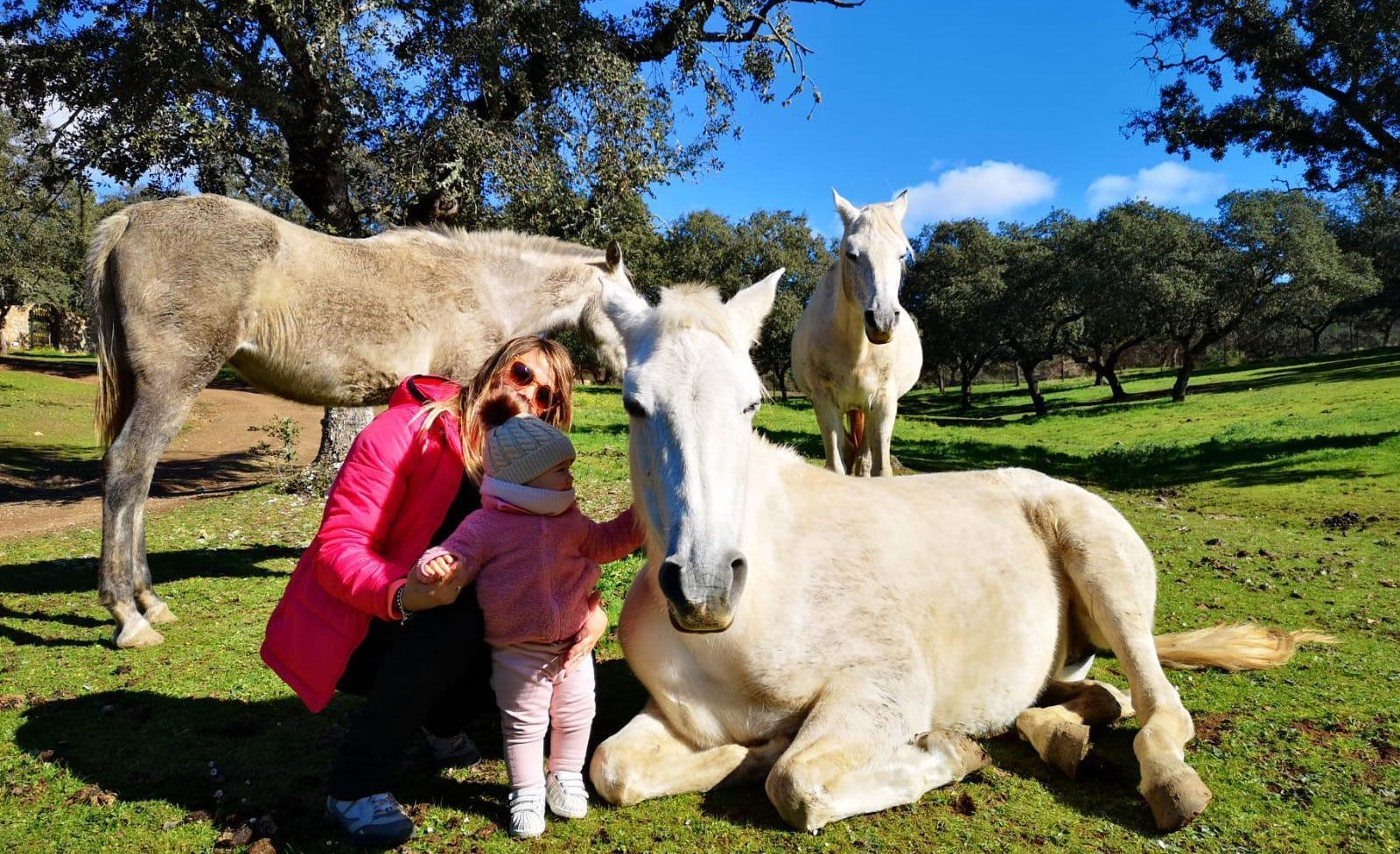 The Lake Rural House in Cordoba, Cerro Muriano Photo of tenants with our horses